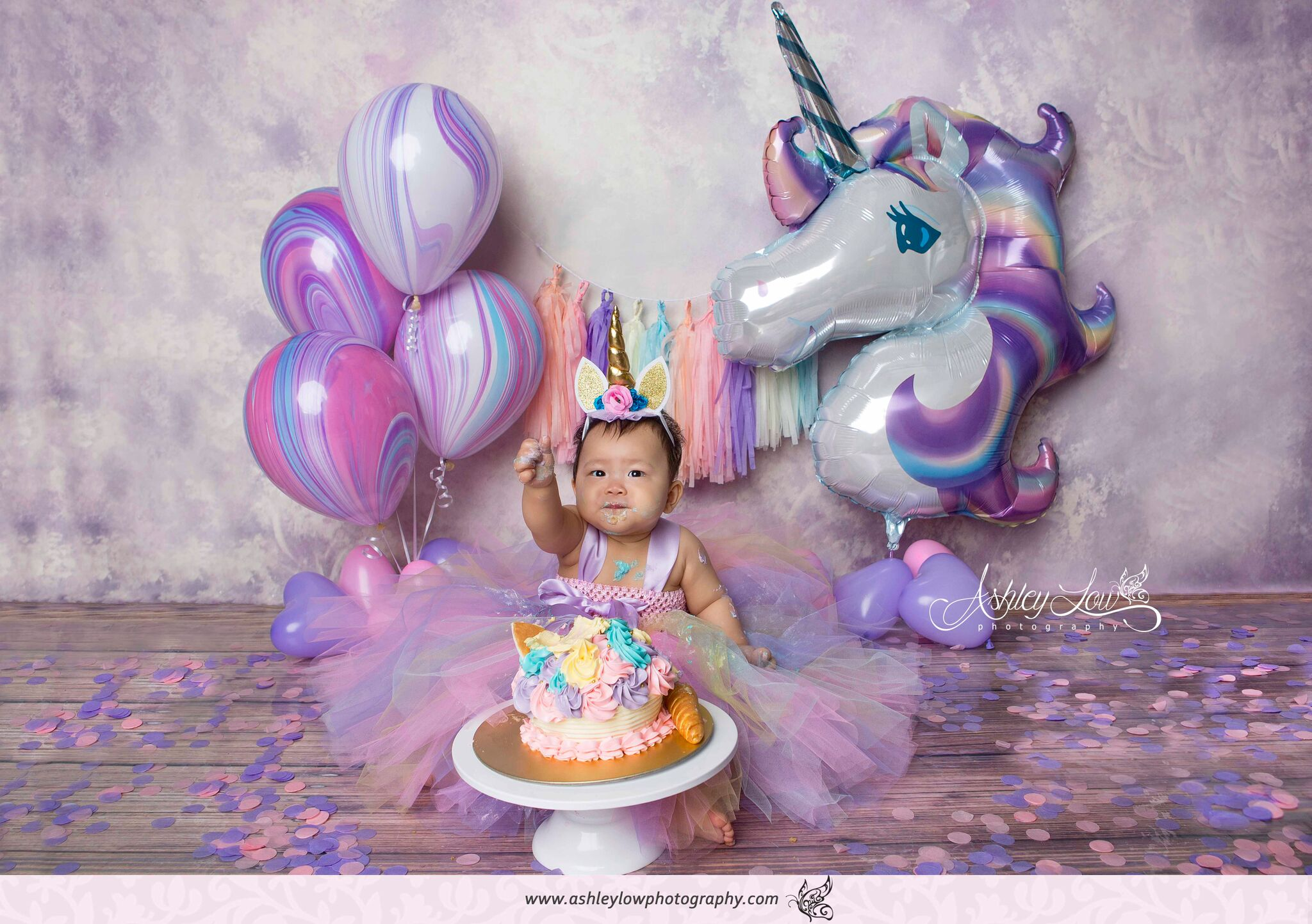 Unicorn Cake Smash Photoshoot By Ashley Low Photography